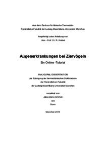 Online dissertation lmu